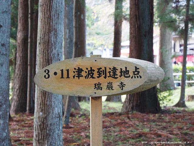 141018_y_03.jpg