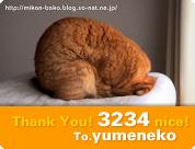 「3234 nice! 」 ミニミニ・カード