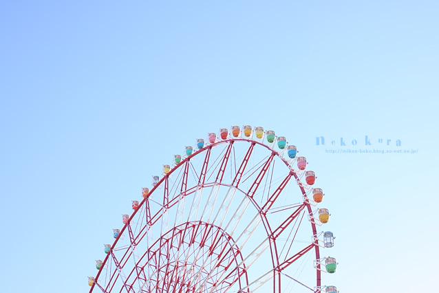 101210_y_01.jpg