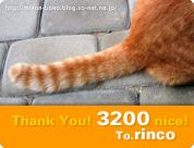 mini_nicecard_3200.jpg